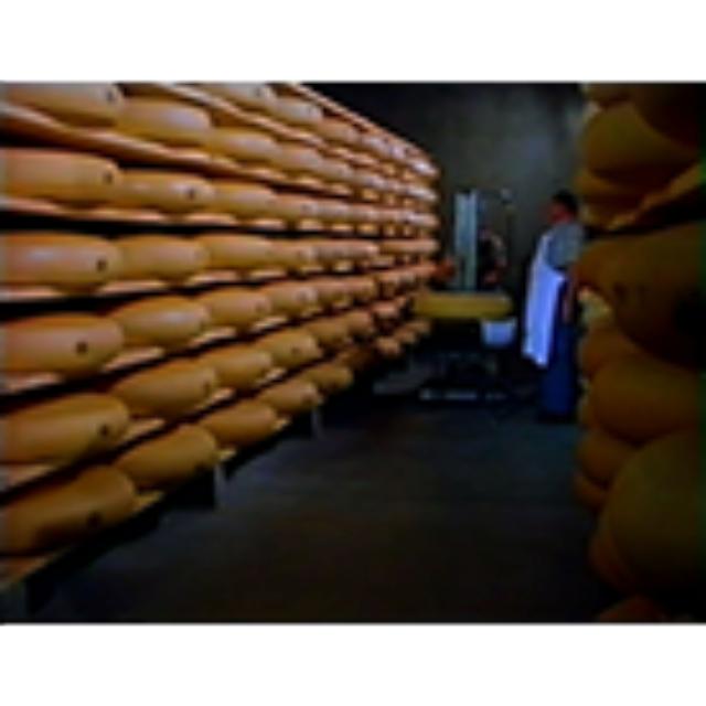 Die Schweizerische Käseunion AG heisst Sie willkommen in der Swisspack (Videofilm)