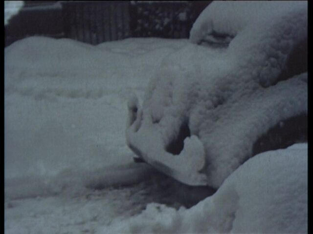 Winterbilder Glarus, Dohlen