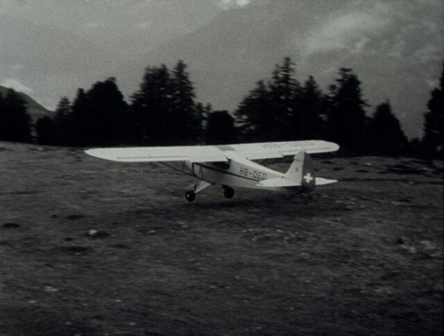 Le ali (0584-3)