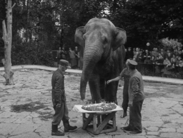 Lo zoo d'argento (0642-3)