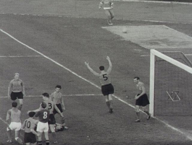 Calcio (0737-6)