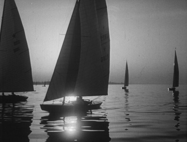 Regate sul lago di Costanza (0779-5)