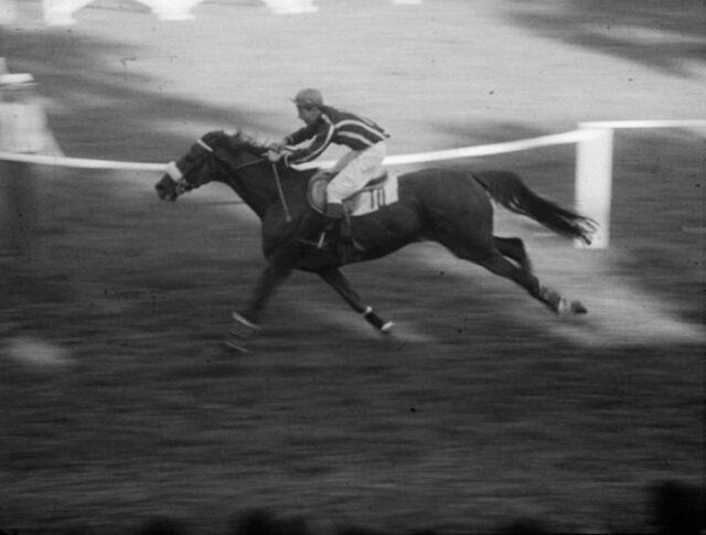 Sport – Ippica (0933-5)