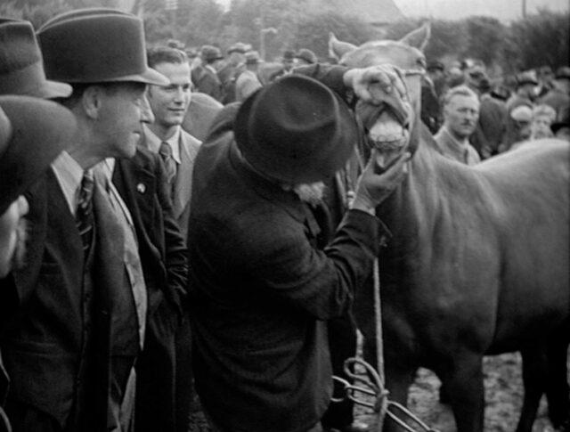 Jura bernois, Reconvilier: La foire aux chevaux de Chaindon (0059-2)