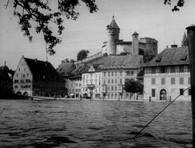 Hautes eaux à la chute du Rhin (0349-4)
