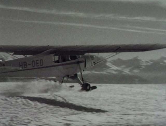 Les ailes (0563-1)