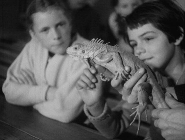 Le zoo à l'école (0866-3)