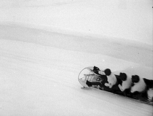 St. Moritz: Bob-Weltmeisterschaften (0294-6)