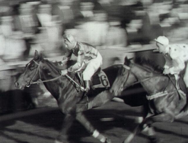 Pferdesport (0572-4)