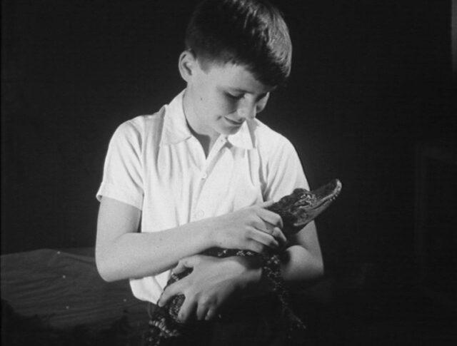 Jugendlicher Zoologe (0773-5)