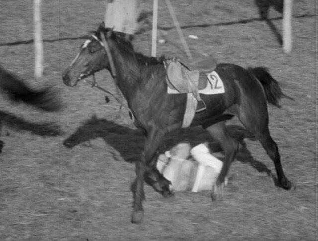 Pferdesport (0962-5)