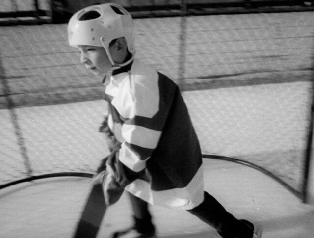 Eishockey-Kücken (1191-5)