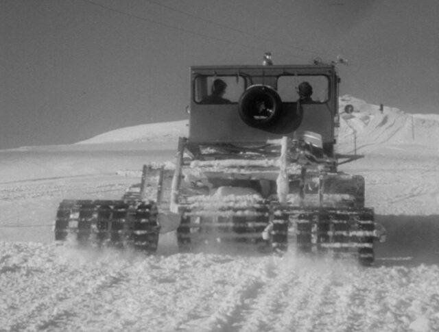 Sumpf und Schnee - keine Hindernisse (1193-5)