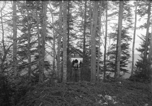Scheinwerferanlage im Wald