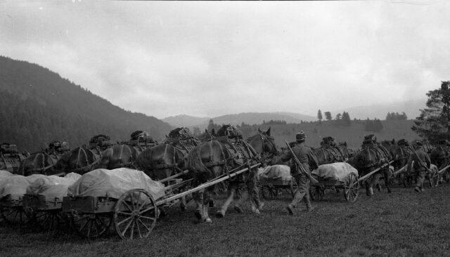 Defilee der Regiments Mitrailleure