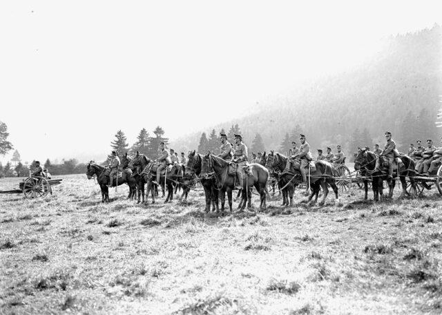 Die Artillerie beim Abmarsch nach dem Defilee