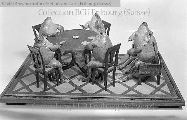 Broye, Estavayer-le-Lac, Musée: les grenouilles du colonel Perrier: partie de cartes