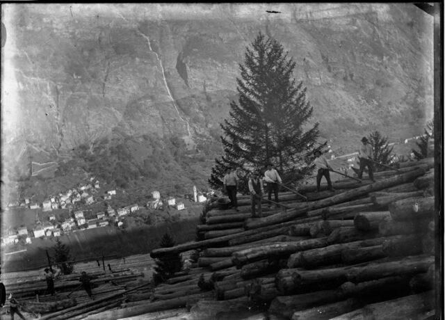 Boscaioli al lavoro su una catasta di tronchi; dietro, sul fondovalle, Dongio