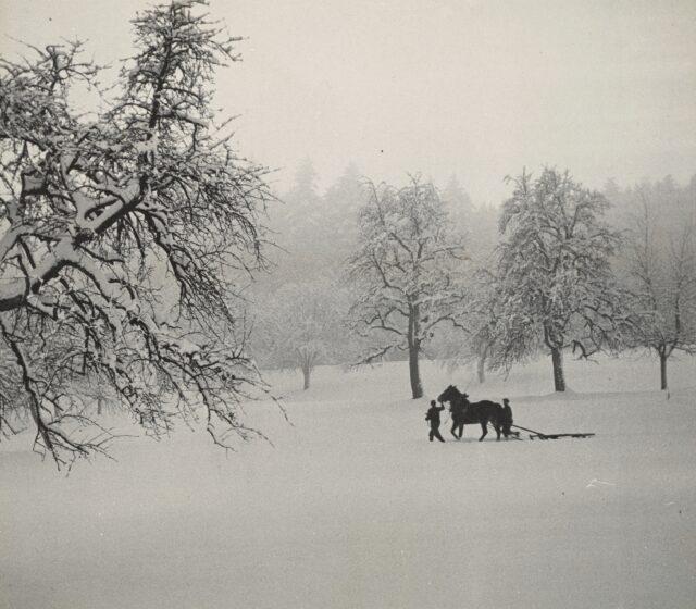 Schneelandschaft, 1930–1935
