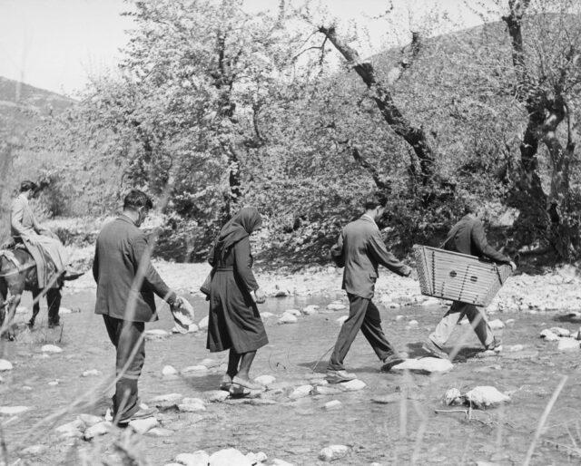 Auf den Weg zu einer Hochzeit, Griechenland, um 1953