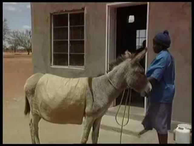 "The Resource Development Programme Presents Revenue Generation Zimbabwe ""The Multiplier Effect"" (7)"