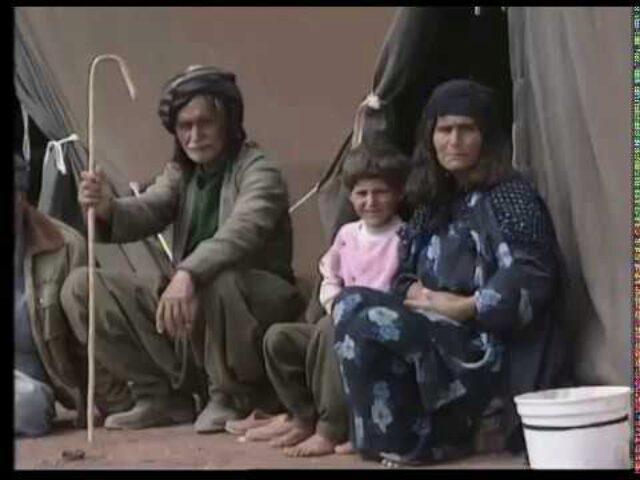 The Gulf 1991 A Tragedy Unfolds
