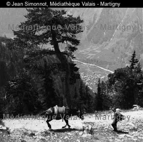 [Pierre Follonier à Daillec, Val d'Hérens]