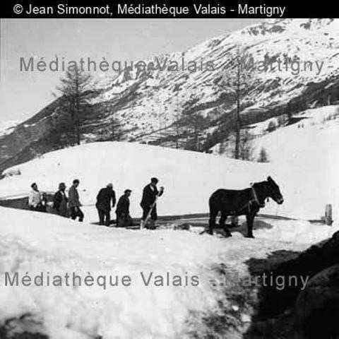 [Transport de bois entre La Sage et la Forclaz, Val d'Hérens]