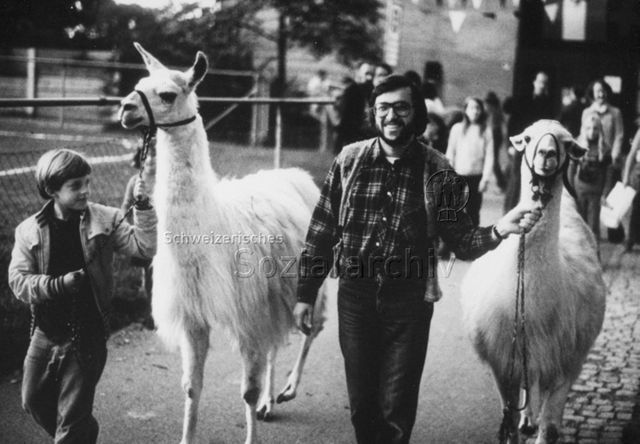 """""""Freizeitanlage"""" - Ein Junge und ein Mann unterwegs mit zwei Lamas; um 1975"""
