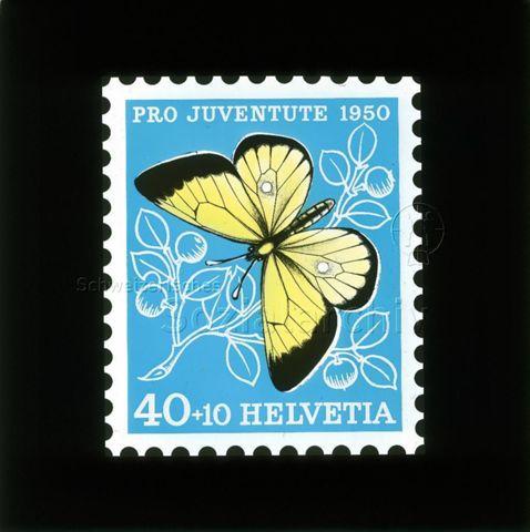 """Diaserie Briefmarken; """"Helvetia 40 +10, Pro Juventute 1950""""; gelber Schmetterling; im Hintergrund Zweig mit Blättern und Früchten; 1950"""