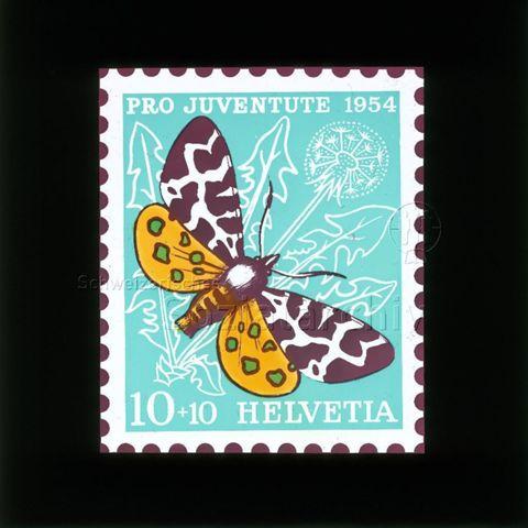 """Diaserie Briefmarken; """"Helvetia 10 +10, Pro Juventute 1954""""; Schmetterling """"Brauner Bär""""; im Hintergrund Löwenzahnblätter und -blume; 1954"""