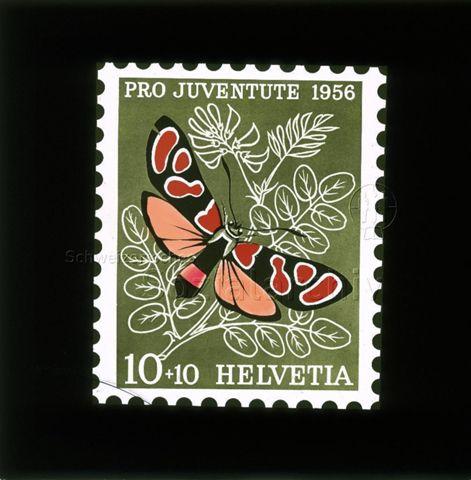 """Diaserie Briefmarken; """"Helvetia 10 +10, Pro Juventute 1956""""; Schmetterling, wahrscheinlich von der Familie """"Widderchen""""; im Hintergrund Pflanzenblätter; 1956"""