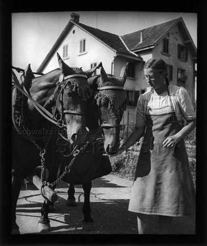 Diaserie zum Thema Mädchen; Mädchen neben zwei Pferden mit Geschirr stehend und die Pferde aus der Hand fütternd; um 1940