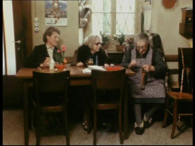 """Treffpunkt vom 29.05.1986; """"Kann man alte Bäume noch verpflanzen"""" (2/2)"""